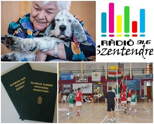 Junior / 2017.11.20 / Pirint Gergő