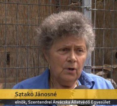 Sztakó Jánosné a Szentendrei Árvácska Egyesület Vezetője és Horváth Ria igazgatóhelyettes