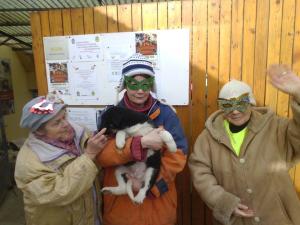 Állati farsangi bulit tartottak az Árvácskánál