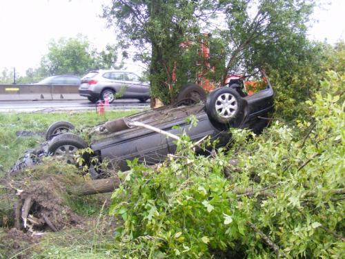 Fejtetőn állt meg az autó a 11-es melletti fa tövében