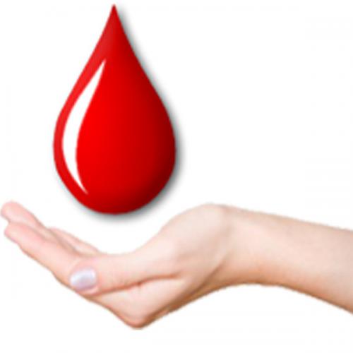 Véradás: A levett vért 1 nap alatt felhasználják