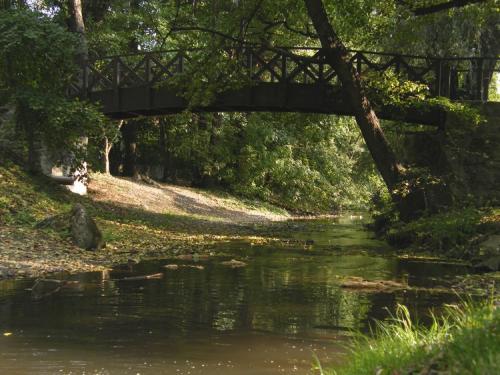 Szemétszedés a Bükkös-patak mentén