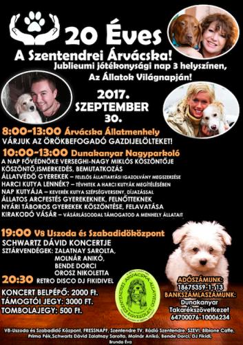 20 éves az Árvácska Állatmentő Egyesület