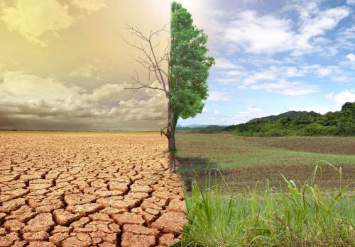 Mit tehetünk a klímaváltozás ellen? pályázat diákoknak