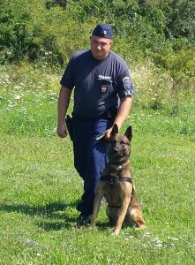 Szolgálati kutya érkezett Szentendrére
