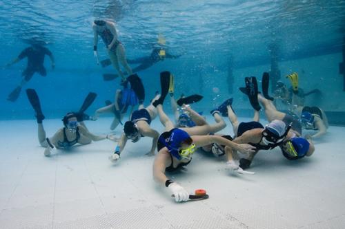 Víz alatti hoki klubcsapatok Európa tornája szombaton a V8-ban