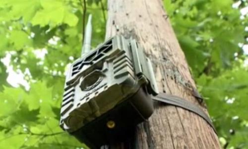 Ellopták a Pest megyei speciális mentők egyik vadkameráját